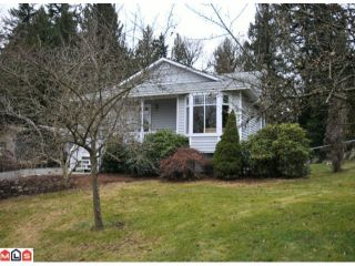 Photo 27: 32437 EGGLESTONE Avenue in Mission: Mission BC House for sale : MLS®# F1028384