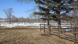 Photo 44: 100 160289 Highway 549 W: Rural Foothills County Detached for sale : MLS®# A1080701
