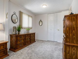 Photo 29: 44 MAITLAND Green NE in Calgary: Marlborough Park Detached for sale : MLS®# A1030134