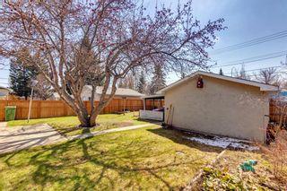 Photo 26: 144 Marbrooke Circle NE in Calgary: Marlborough Detached for sale : MLS®# A1098695