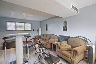 Photo 28: 5305 46 Street: Rimbey Detached for sale : MLS®# A1134871
