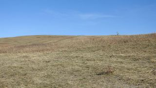 Photo 18: SW 36-20-3W5: Rural Foothills County Residential Land for sale : MLS®# A1101413