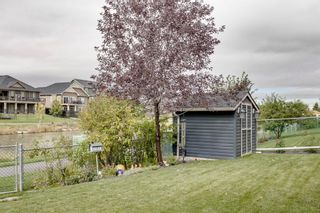 Photo 39: 885 Canoe Green SW: Airdrie Detached for sale : MLS®# A1146428