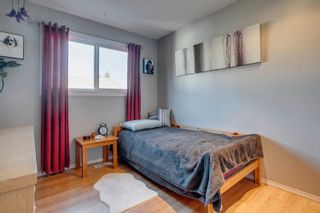 Photo 23: 14269 30 Street in Edmonton: Zone 35 House for sale : MLS®# E4261752