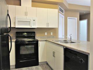 Photo 9: 308 4316 139 Avenue in Edmonton: Zone 35 Condo for sale : MLS®# E4219146