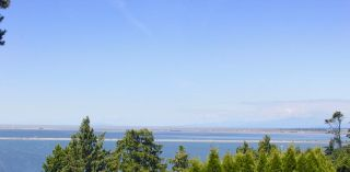 Photo 3: 192 GRAHAM Drive in Delta: English Bluff House for sale (Tsawwassen)  : MLS®# R2614111
