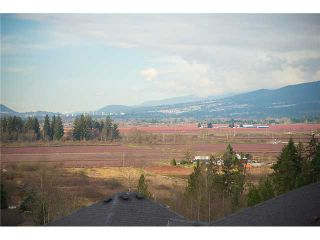 Photo 19: 13668 228B Street in Maple Ridge: Silver Valley House for sale : MLS®# V1064926