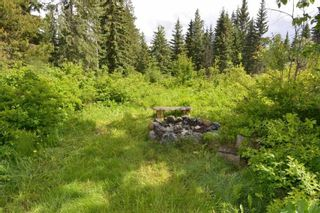 """Photo 6: 28062 WALCOTT QUICK Road in Smithers: Smithers - Rural House for sale in """"GRANTHAM AREA"""" (Smithers And Area (Zone 54))  : MLS®# R2281302"""