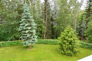 """Photo 17: 8721 GLACIERVIEW Road in Smithers: Smithers - Rural House for sale in """"SILVERN ESTATES"""" (Smithers And Area (Zone 54))  : MLS®# R2382748"""
