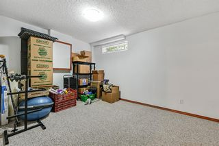 Photo 35: 92 Sandringham Close in Calgary: Sandstone Valley Detached for sale : MLS®# A1146191