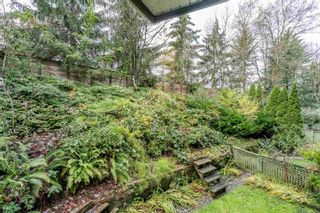 """Main Photo: 211 3738 NORFOLK Street in Burnaby: Central BN Condo for sale in """"Winchelsea"""" (Burnaby North)  : MLS®# R2601844"""