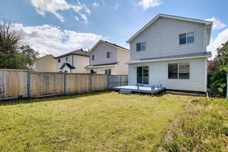 Photo 50: 22 Martin Crossing Way NE in Calgary: Martindale Detached for sale : MLS®# A1141099