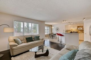 Photo 17: 18 Copperfield Crescent SE in Calgary: Copperfield Detached for sale : MLS®# A1141643