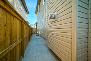 Photo 31: 31 SKYVIEW SHORES Link in Calgary: Skyview Ranch Detached for sale : MLS®# A1130937