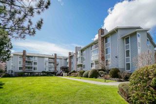 """Photo 2: 102 5379 205 Street in Langley: Langley City Condo for sale in """"Heritage Manor"""" : MLS®# R2447555"""