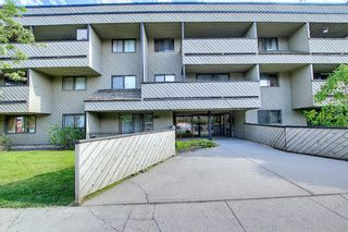 Photo 37: 202 1513 26th Avenue SW 26th Avenue SW in Calgary: South Calgary Apartment for sale : MLS®# A1117931