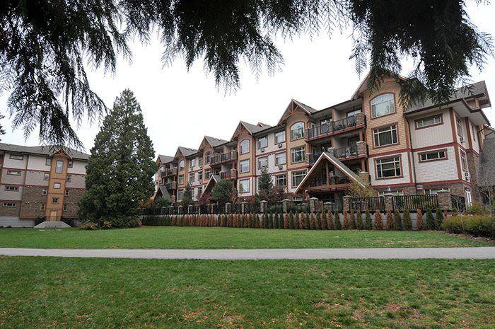 """Main Photo: 207 12525 190A Street in Pitt Meadows: Mid Meadows Condo for sale in """"CEDAR DOWNS"""" : MLS®# R2222024"""