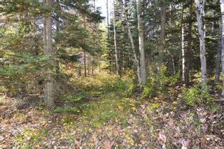 """Photo 15: Lot 8 GLACIER VIEW Road in Smithers: Smithers - Rural Land for sale in """"Silvern Estates"""" (Smithers And Area (Zone 54))  : MLS®# R2410914"""