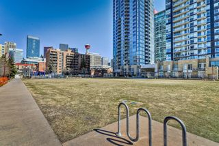 Photo 5: 402 215 14 Avenue SW in Calgary: Beltline Apartment for sale : MLS®# A1095956