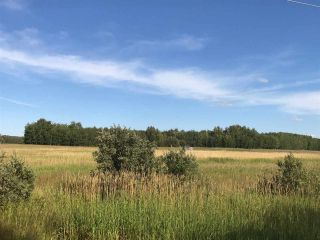 Photo 27: 57525 Rg Rd 214: Rural Sturgeon County Rural Land/Vacant Lot for sale : MLS®# E4266088