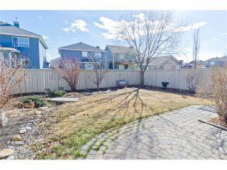Photo 31: 109 ROYAL OAK Place NW in Calgary: Royal Oak House for sale : MLS®# C4055775