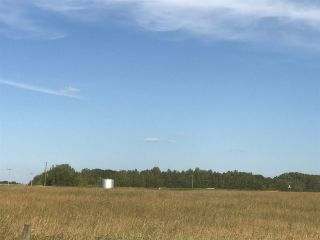 Photo 4: 57525 Rg Rd 214: Rural Sturgeon County Rural Land/Vacant Lot for sale : MLS®# E4192257