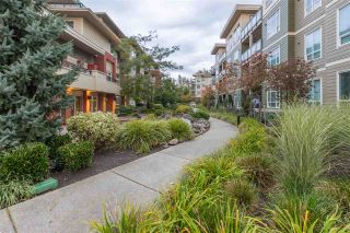 """Photo 20: B201 20211 66 Avenue in Langley: Willoughby Heights Condo for sale in """"Elements"""" : MLS®# R2412184"""