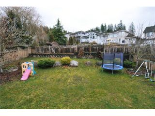 Photo 15: 23733 ROCK RIDGE Drive in Maple Ridge: Silver Valley House for sale : MLS®# V1046264