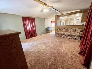 Photo 27: 305 Church Avenue in Miniota: R32 Residential for sale (R32 - Yellowhead)  : MLS®# 202122850