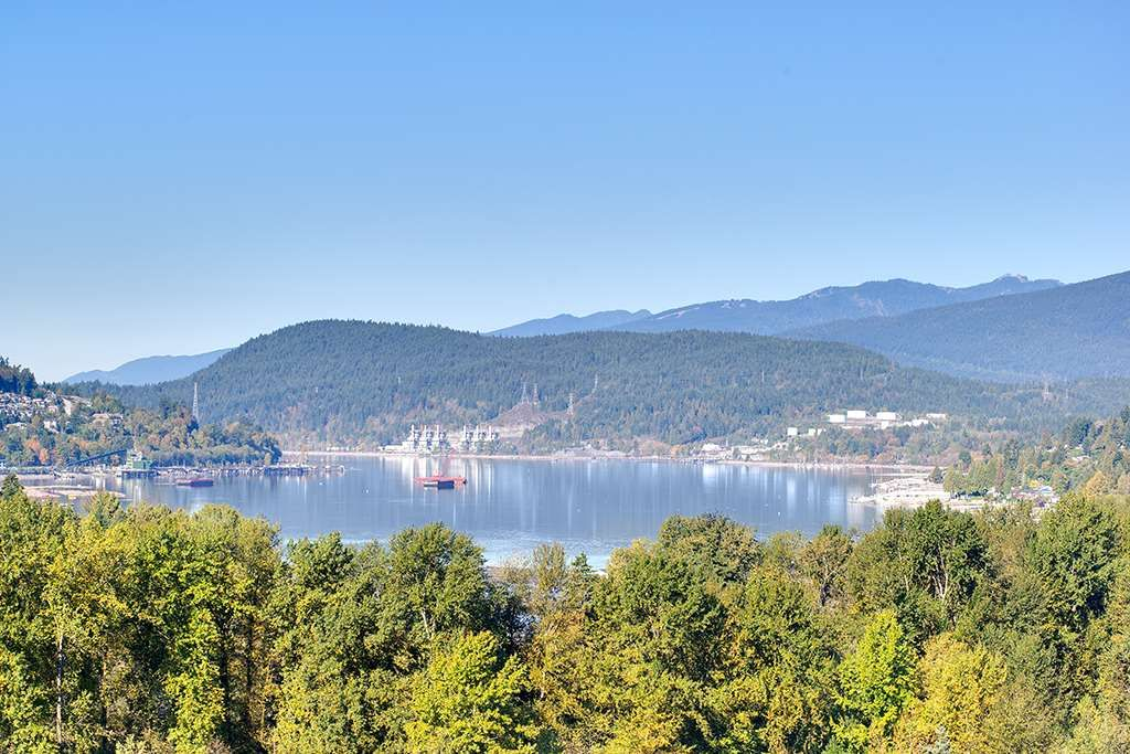 """Main Photo: 1604 110 BREW Street in Port Moody: Port Moody Centre Condo for sale in """"ARIA 1 at SUTER BROOK"""" : MLS®# R2414522"""