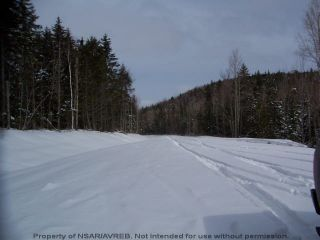 Photo 5: Lot 4 ELSHIRL Road in Plymouth: 108-Rural Pictou County Vacant Land for sale (Northern Region)  : MLS®# 202112050