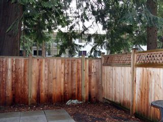 Photo 13: 4 33293 E BOURQUIN Crescent in Abbotsford: Central Abbotsford Townhouse for sale : MLS®# R2135659