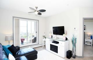 Photo 17: 404 1004 ROSENTHAL Boulevard in Edmonton: Zone 58 Condo for sale : MLS®# E4250933