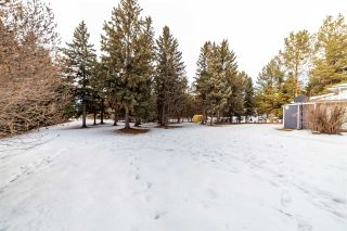 Photo 39: 12 Equestrian Place: Rural Sturgeon County House for sale : MLS®# E4229821