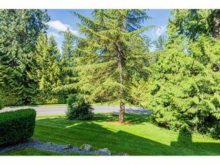 "Photo 35: 18 4001 OLD CLAYBURN Road in Abbotsford: Abbotsford East Townhouse for sale in ""Cedar Springs"" : MLS®# R2469026"