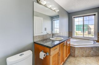 Photo 20: 158 Saddlemont Boulevard NE in Calgary: Saddle Ridge Detached for sale : MLS®# A1145866