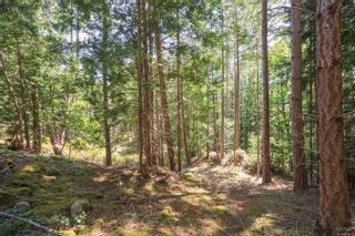 Photo 7: 9904 Castle Rd in Pender Island: GI Pender Island Land for sale (Gulf Islands)  : MLS®# 876033