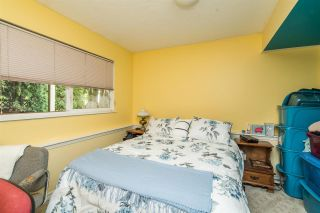 Photo 28: 20705 47A Avenue in Langley: Langley City House for sale : MLS®# R2574579