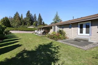 Photo 20: 15452 KILKEE PLACE in Surrey: Sullivan Station House for sale : MLS®# R2111353