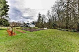"""Photo 6: 19834 80 Avenue in Langley: Willoughby Heights House for sale in """"Jericho Neighborhood Plan"""" : MLS®# R2232726"""