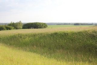 Photo 1: Highway 36 Twp Rd 560: Rural Two Hills County Rural Land/Vacant Lot for sale : MLS®# E4099407