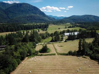 Photo 5: 1065 IVERSON Road in Cultus Lake: Columbia Valley Land for sale : MLS®# R2534678