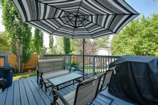 Photo 43: 5206 57 Street: Beaumont House for sale : MLS®# E4253085