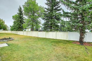 Photo 31: 184 Woodside Close NW: Airdrie Semi Detached for sale : MLS®# A1137637