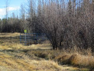 Photo 4: NW 24-54 RR 131: Niton Junction Rural Land for sale (Edson)  : MLS®# 32590