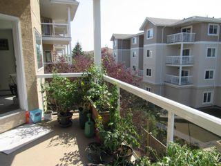 Photo 20: 317 10511 42 Avenue in Edmonton: Zone 16 Condo for sale : MLS®# E4248739