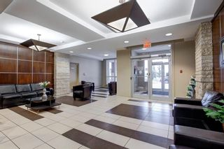 Photo 3: 2002 8880 Horton Road SW in Calgary: Haysboro Apartment for sale : MLS®# A1148314