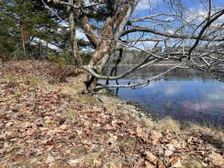 Photo 30: 465 Highway 3 in Sable River: 407-Shelburne County Residential for sale (South Shore)  : MLS®# 202105286