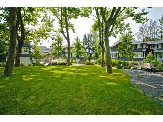 """Photo 30: 16 18199 70TH Avenue in Surrey: Cloverdale BC Townhouse for sale in """"Augusta"""" (Cloverdale)  : MLS®# F1424865"""