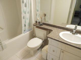 Photo 15: 803 10909 103 Avenue in Edmonton: Zone 12 Condo for sale : MLS®# E4262565